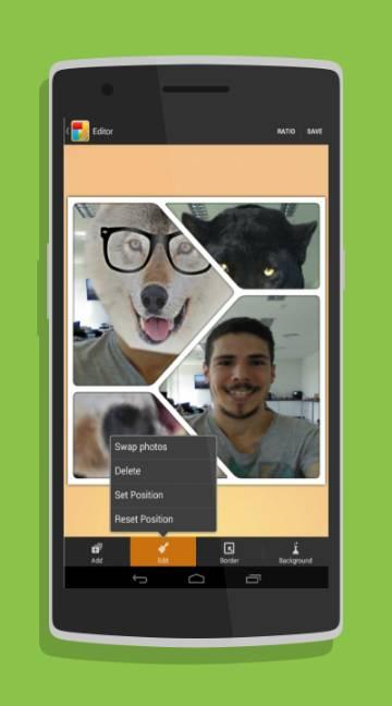 KD Collage-screenshot-2